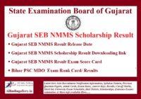 Gujarat SEB NMMS Result