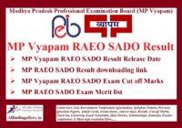 MP Vyapam RAEO SADO Result
